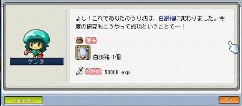Maple100708_185856.jpg