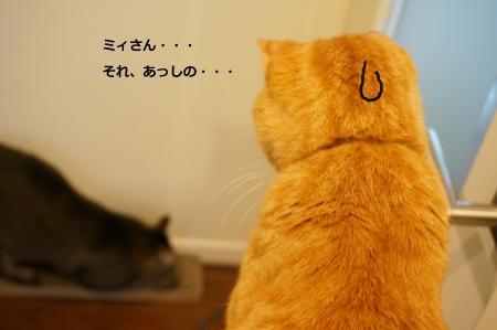 縺励s辷ェ縺ィ縺酸convert_20141116200441