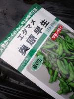 20110423枝豆