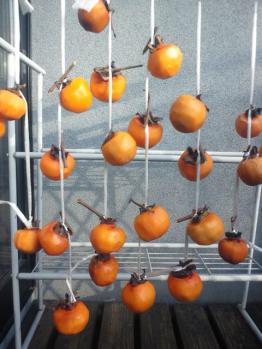20121124干し柿
