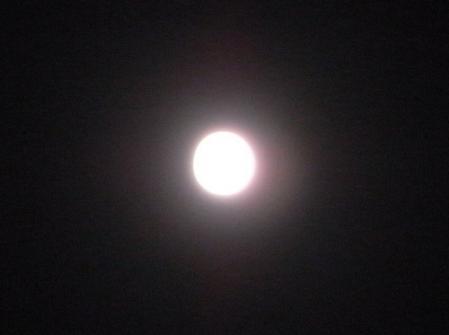 20110319満月1