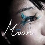 20100401moon
