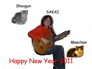 Happy New Year 2011 A (640x480)