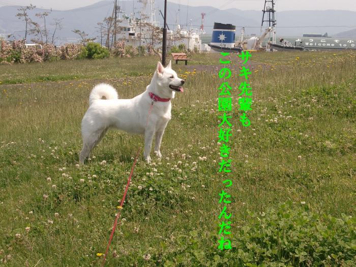 004_convert_20110621201600.jpg