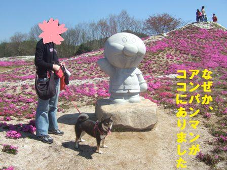 DSCF3323_20100426165910.jpg