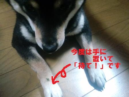blog029.jpg