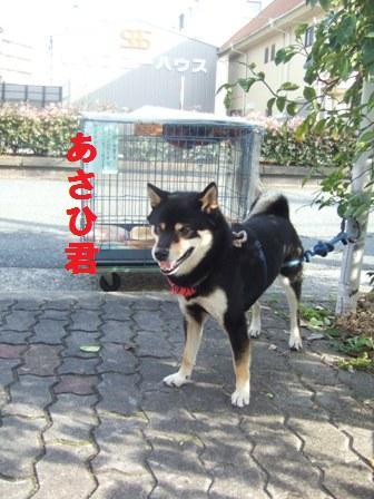 blog1089.jpg