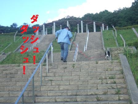blog114.jpg