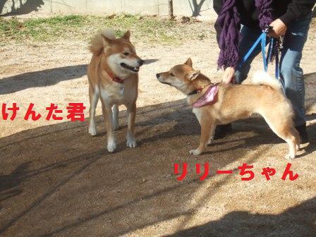 blog1145.jpg