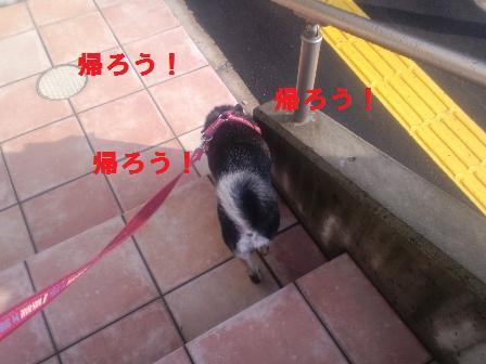 blog1180.jpg