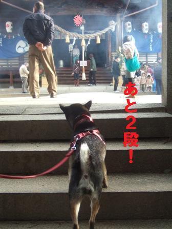 blog1238_20110102181207.jpg