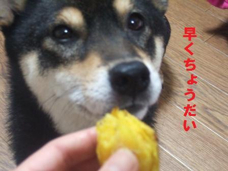 blog1242.jpg