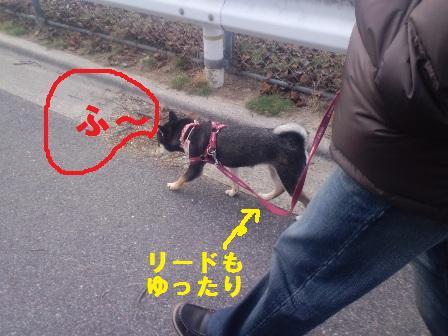 blog1247.jpg