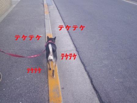 blog1248.jpg