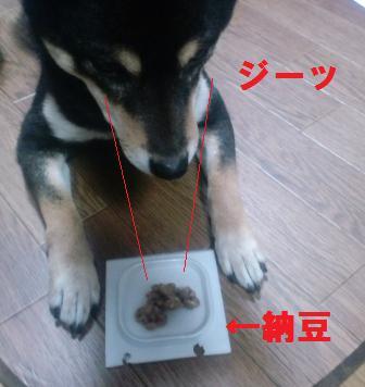 blog1253.jpg