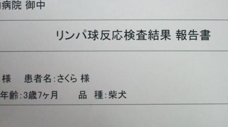 blog1271.jpg