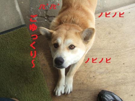 blog1287.jpg