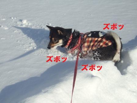 blog1342.jpg