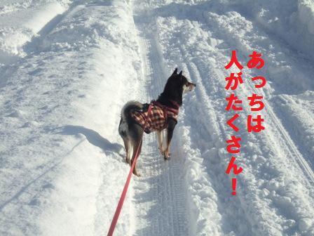 blog1345.jpg