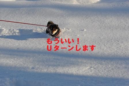 blog1356.jpg