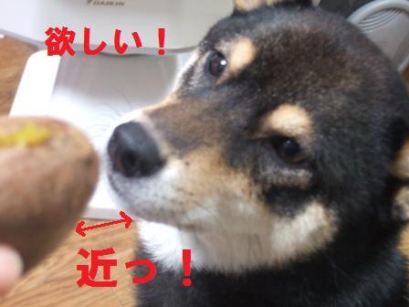 blog1392.jpg