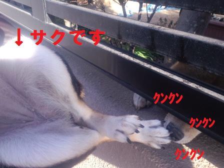 blog1406.jpg