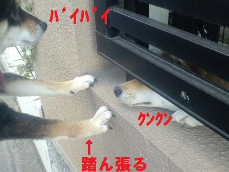 blog1410.jpg