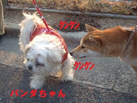 blog1413.jpg