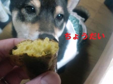blog1420.jpg