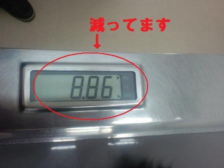 blog1436.jpg