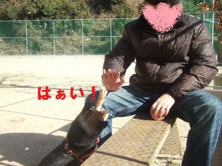 blog1562.jpg