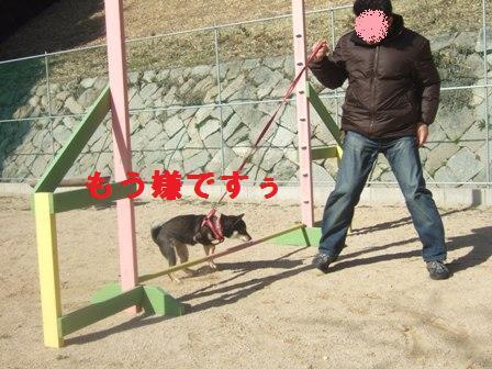 blog1567.jpg