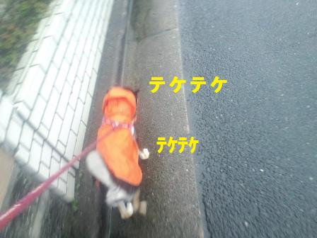 blog1590.jpg