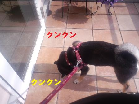blog1813.jpg