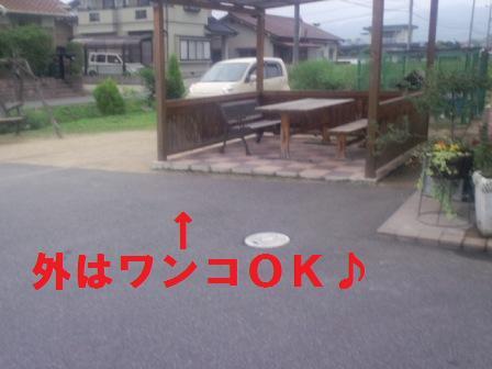 blog2125.jpg