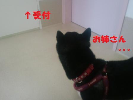 blog2208.jpg
