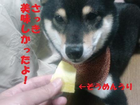 blog2223.jpg