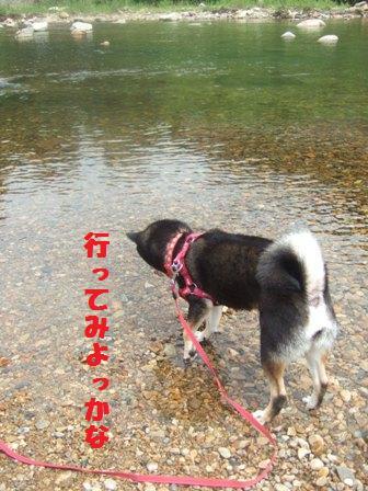 blog2234.jpg