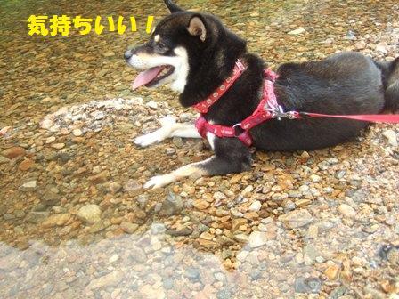blog2243.jpg