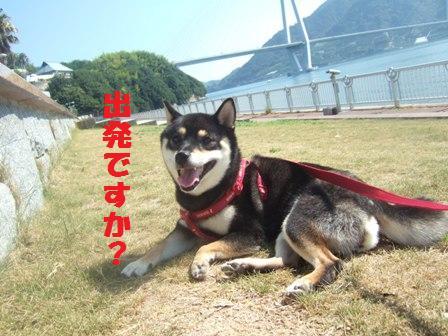 blog2298.jpg