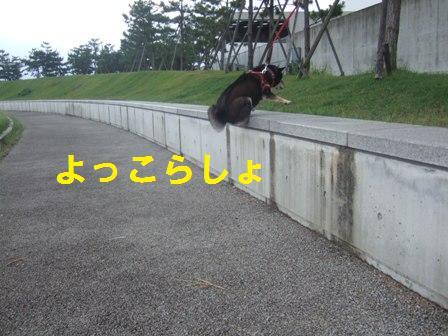 blog244.jpg