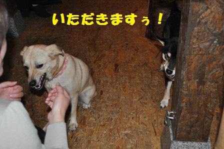 blog2494.jpg