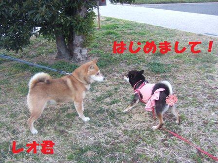 blog2976.jpg