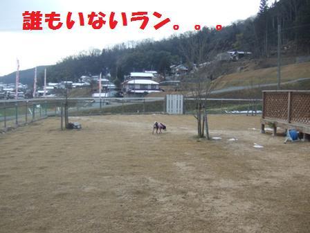 blog3041.jpg