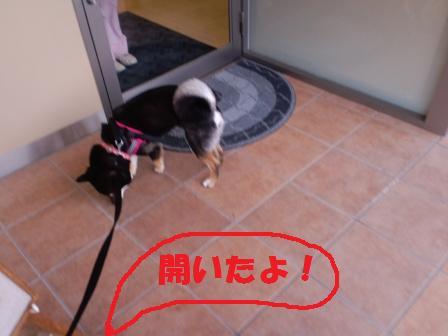 blog3150.jpg