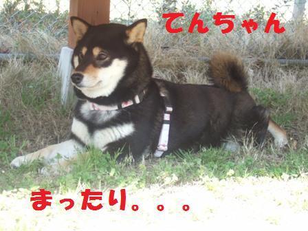 blog3265.jpg