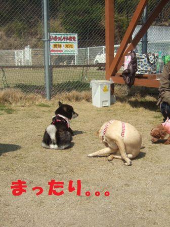 blog3272.jpg