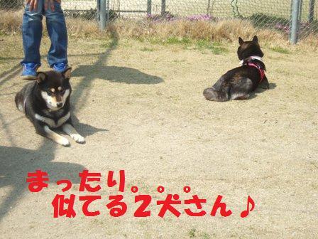blog3273.jpg