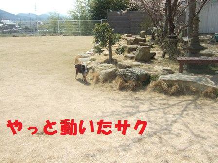 blog3275.jpg
