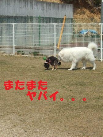 blog3280.jpg